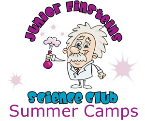 Advert: https://junior-einsteins-science-club.class4kids.ie/